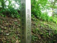 Takaiwa_015