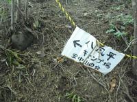 Takaiwa_150