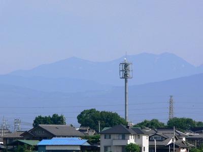 Tanigwa201107_045