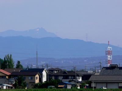 Tanigwa201107_053