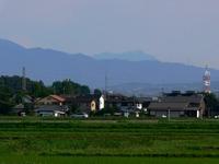 Tanigwa201107_0242