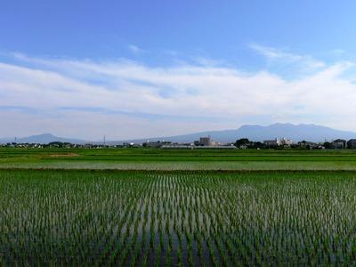 Tanigwa201107_060
