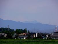 Tanigwa201107_065