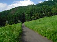 Nozawa2010__306