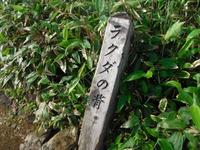 Tanigwa20110709_050