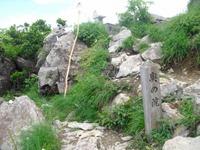 Tanigwa20110709_222