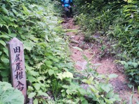 Tanigwa20110709_317