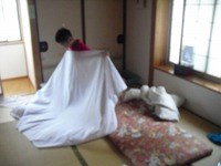 Nozawa2011_353