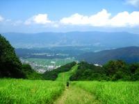 Nozawa2011_163