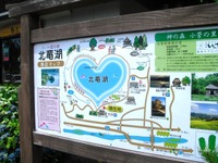 Nozawa2011_209