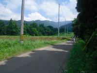 Nozawa2011_242