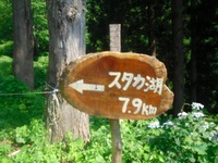 Nozawa2011_283