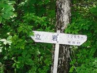 Tatuiwa_149
