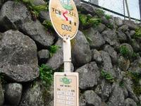 Tatuiwa_321