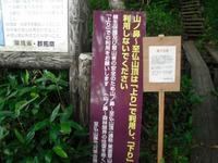 Oze20118__111