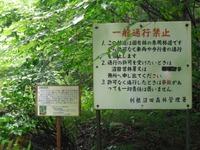 Sagurigawa_099