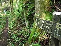 Nanmoku_ueno_069