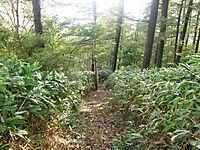 Hotaka2011_259