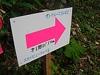 Hotaka2011_066