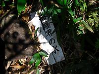 Hotaka2011_186
