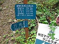 Kanna2011_091