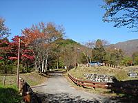 Shiraga_002