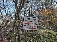 Shiraga_024