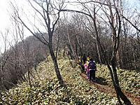 Shiraga_048