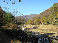 Shiraga_136