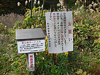 Chozu_020