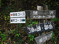 Chozu_156