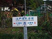 Chichibu_201111_016
