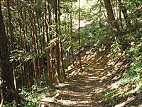 Chichibu_201111_067