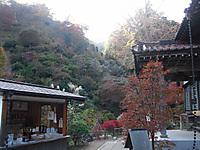 Chichibu_201111_098