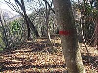 Nikkure_takaiwa_063
