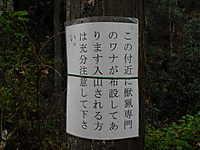 Chichibu201112_029_2