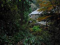 Chichibu201112_101