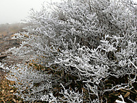Akagi201112_030