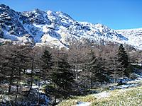 Kurofu2011_221