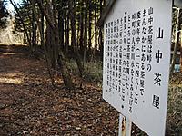 Kumanokiridumi_016