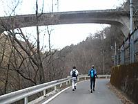 Kumanokiridumi_127