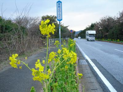 Tateyama_059
