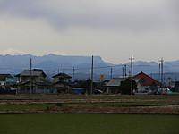 Tanigawa_cat_0711