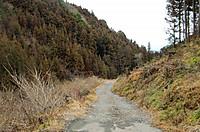 Otenguyama_135