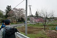 Nanamine2012_021