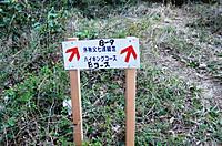 Nanamine2012_049