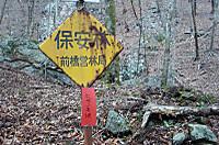 Nemoto_kumataka2012_052