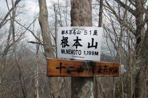 Nemoto_kumataka2012_115