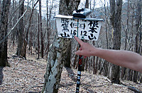 Nemoto_kumataka2012_127