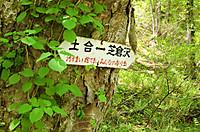 Yubisogawa_017